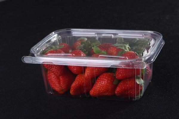 广西塑料吸塑内托包装的重要性能与存放技巧