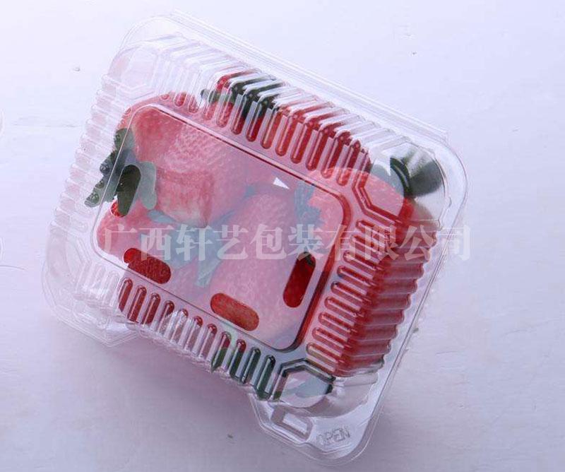 水果透明PET吸塑托盘