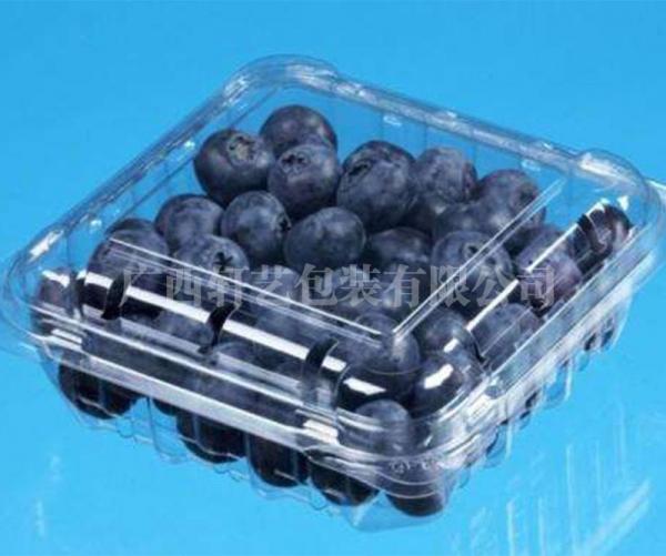 水果食品吸塑托盘